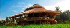 The Green School in Bali